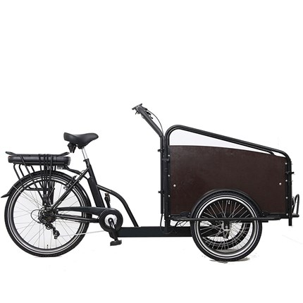 Ebici Cargo Box SP