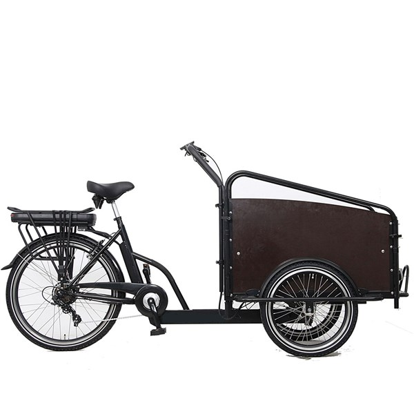 Ebici Cargo Box SP - 7V Tourney
